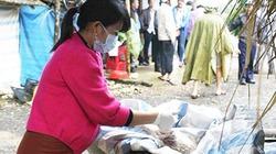 Xét nghiệm mẫu tìm nguyên nhân vịt và cá chết bất thường trên sông Phủ ở Quảng Ngãi