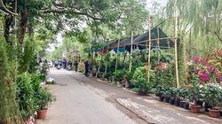 Độc đáo đi chợ quê giữa lòng thành phố