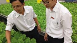 """""""Cất cánh"""" cho các dự án nông nghiệp công nghệ cao"""