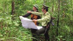 Phát huy vai trò nòng cốt trong quản lý, bảo vệ và phát triển rừng