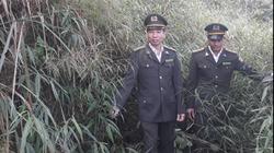 Thành phố Lai Châu: Nhân lên màu xanh của rừng