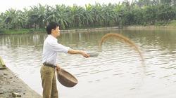 Gây Quỹ HTND hiệu quả, nhiều nông dân hưởng lợi