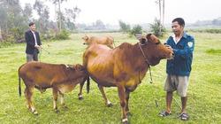 Quỹ hỗ trợ nông dân tiếp sức nông dân làm giàu, tăng thu nhập