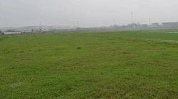 Những cánh đồng không có nông dân, làng toàn người già và sắp già