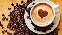 Cà phê vùng lên tăng nửa triệu/tấn, hồ tiêu trụ vững