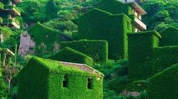Ngôi làng bỏ hoang bỗng dưng khách đến nườm nượp, vì sao?