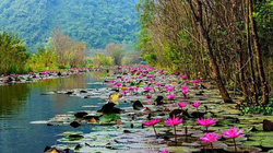 Không phải mùa lễ hội, ngỡ ngàng khi đến chùa Hương tháng 10