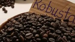 Cà phê gặp khó vì lực chốt bán, hồ tiêu giữ phong độ tăng
