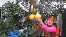 Khâm phục ý chí của một người phụ nữ khiếm thị Phú Xuyên