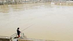 Lệnh cấm đánh bắt và câu cá có thể được Pháp thực thi tại thủ đô Paris