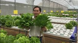 Công nghệ nhà trồng nấm tự động giúp sinh lời qua hai mùa vụ