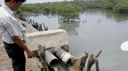 Quy định về tiêu chí xác định các cơ sở gây ô nhiễm môi trường phải di dời