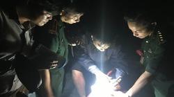 Cứu du khách nước ngoài bị lạc khi đi bộ mạo hiểm băng qua rừng Sơn Trà