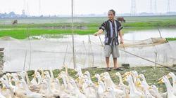 Có kiến thức, lão nông Bắc Giang tự tin làm giàu trên đất khó