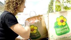 Người dân Pháp thích đi hái hoa, hái rau quả và mua trực tiếp tại nông trại