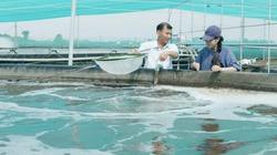 Dùng bể tròn vách đứng tận thu chất thải của tôm để nuôi cá kèo