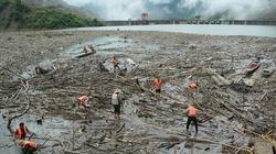 Cận cảnh hàng nghìn tấn gỗ trôi theo dòng lũ về hồ thủy điện Bản Vẽ