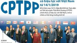 Xuất khẩu sang các nước trong CPTPP tăng trưởng mạnh