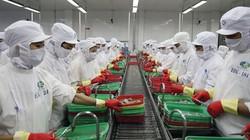 WB: Thế giới đầy bất định, Việt Nam cần cảnh giác với 5 rủi ro