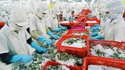 Muốn tận dụng lợi ích từ EVFTA, cần phòng vệ thương mại trước (Bài 2)