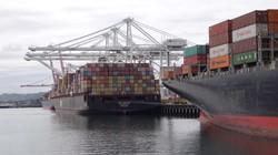 Nghi vấn kết quả thỏa thuận thương mại Mỹ Trung, chứng khoán Mỹ giảm nhẹ