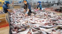 Xuất khẩu giảm mạnh, Thuỷ sản Hùng Vương của ông Dương Ngọc Minh báo lỗ 189 tỷ