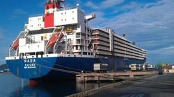 Tập đoàn Cảng Hạ Môn muốn mở tuyến container tại cảng Vũng Áng tới Hạ Môn