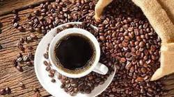 Giá cà phê tiếp tục giảm, cà phê Việt mất dần thị trường trên trường quốc tế?