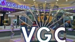 Công ty con của ông chủ 8x Nguyễn Văn Tuấn chi 630 tỷ đồng mua 30 triệu cổ phiếu của Viglacera