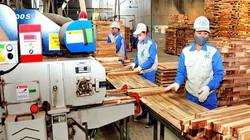 """Trùng với các sản phẩm Trung Quốc, gỗ Việt xuất khẩu đứng trước """"cảnh báo đỏ"""""""