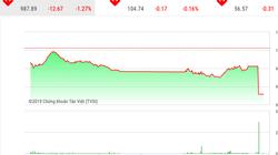 """Chứng khoán ngày 21/11: Cổ phiếu VN30 bị """"đạp"""" phiên ATC, VnIndex rơi gần 13 điểm"""