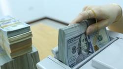 Tỷ giá ngoại tệ hôm nay 21/11: Nơi tăng mạnh, nơi giảm sâu