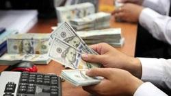Tỷ giá ngoại tệ hôm nay 22/11: Tăng ở cả chợ đen và ngân hàng
