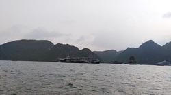 Quảng Ninh: Lo du lịch trá hình, rà soát tuyến tàu Tuần Châu – Cát Bà