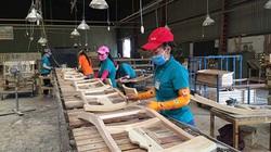 Ngành gỗ xuất khẩu đứng trước rủi ro phòng vệ thương mại