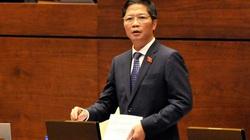 Doanh nghiệp chủ lô nhôm 4,3 tỷ USD đội lốt hàng Việt do người Trung Quốc đầu tư