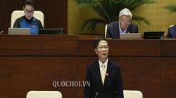 Bộ trưởng Trần Tuấn Anh khẳng định gà nhập khẩu không ảnh hưởng đến chăn nuôi trong nước