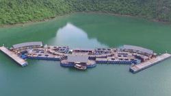 Vịnh Hạ Long có điểm du lịch nổi Đại Yên Plaza