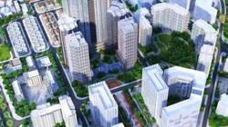 """Dự án khu đô thị Vibex 7.000 tỷ đồng bị """"tố"""" báo cáo sai nguồn gốc đất"""