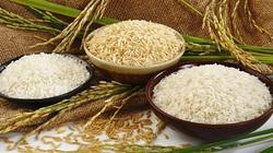 Hong Kong - thị trường tiềm năng của gạo chất lượng cao Việt Nam