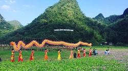 Thung lũng hoa lớn nhất Việt Nam đóng cửa sau 2 năm hoạt động