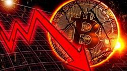 """Giá Bitcoin rơi vào đà giảm """"không phanh"""""""