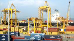 """Bán """"chui"""" cổ phiếu, Công ty cổ phần Cảng Quảng Ninh bị  phạt gần 100 triệu đồng"""