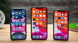 5 mẫu iPhone sẽ được Apple ra mắt vào năm 2020