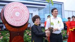 Tết trồng cây: Tập đoàn TH cam kết tặng 21.000 cây giống/năm cho tỉnh Nghệ An