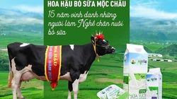 """""""Hoa hậu bò sữa Mộc Châu"""" từ chối đề nghị chào mua của Vinamilk"""