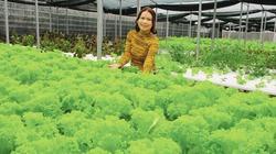 """Gái xinh """"9x"""" bỏ phố về quê khởi nghiệp trồng rau thủy canh, đút túi hơn nửa tỷ/năm"""