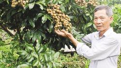 Hỗ trợ nông dân sản xuất hàng hóa từ nguồn Quỹ