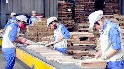 Xuất khẩu gỗ và lâm sản 4 tháng đầu năm tăng xấp xỉ 18%