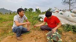 Nậm Pồ mang đến cho người dân những giống cây trồng tốt nhất